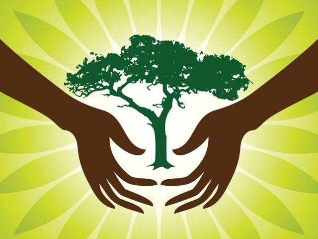Green nature essay