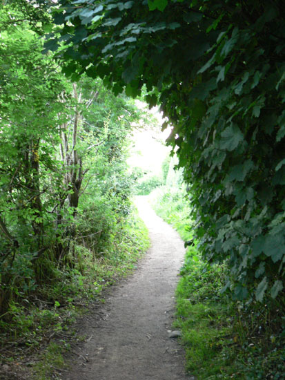 green path into the -#main