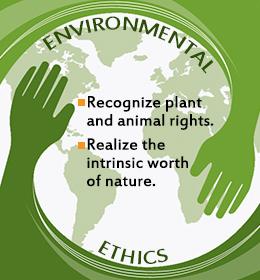 Environmental Ethics Essay