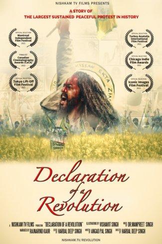 declaration of a revolution.jpg