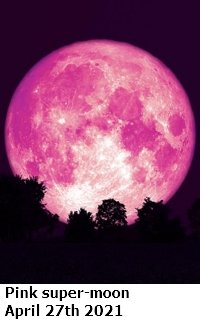 pink supermoon.jpg