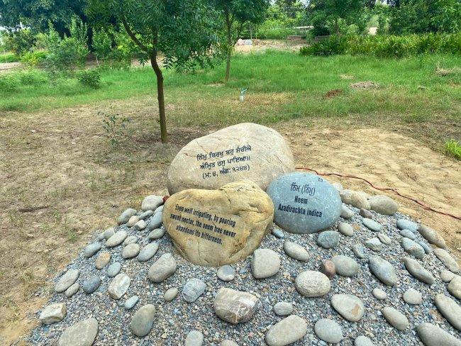 baag 2 Stones at EcoSikh Garden.jpg