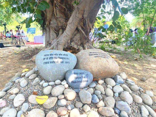 baag Stones at EcoSikh Garden.jpg