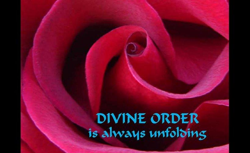 Image result for divine order