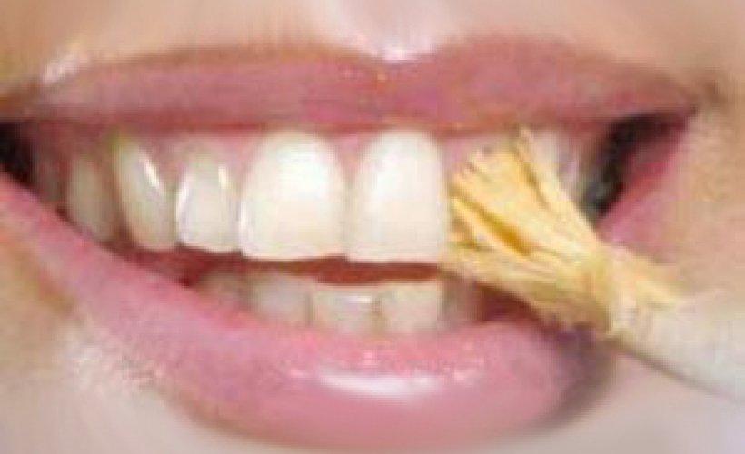 How to Brush Your Teeth - Guru Gobind Singh Ji's