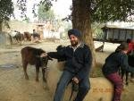Sukwinder singh's picture